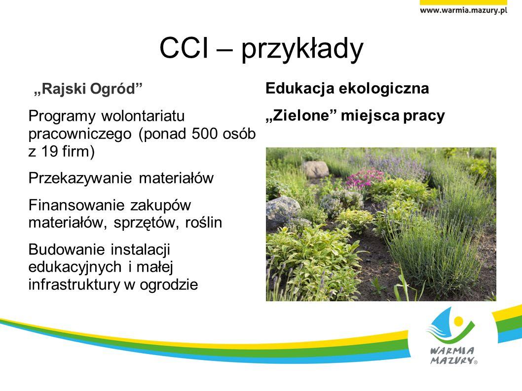 CCI – przykłady Rajski Ogród Programy wolontariatu pracowniczego (ponad 500 osób z 19 firm) Przekazywanie materiałów Finansowanie zakupów materiałów, sprzętów, roślin Budowanie instalacji edukacyjnych i małej infrastruktury w ogrodzie Edukacja ekologiczna Zielone miejsca pracy