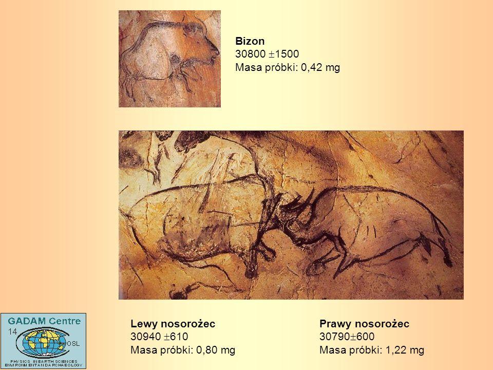 Prawy nosorożec 30790 600 Masa próbki: 1,22 mg Lewy nosorożec 30940 610 Masa próbki: 0,80 mg Bizon 30800 1500 Masa próbki: 0,42 mg
