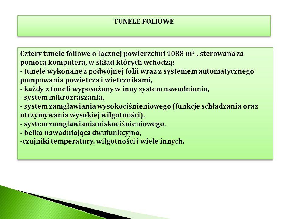 TUNELE FOLIOWE Cztery tunele foliowe o łącznej powierzchni 1088 m 2, sterowana za pomocą komputera, w skład których wchodzą: - tunele wykonane z podwó