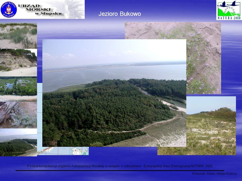 Wykonał: Adam Meller-Kubica Podział kompetencji organów Administracji Morskiej w związku z wdrożeniem Europejskiej Sieci Ekologicznej NATURA 2000 Jezi