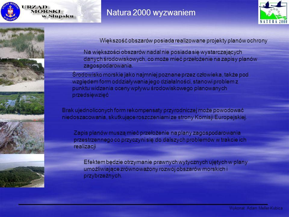 Wykonał: Adam Meller-Kubica Natura 2000 wyzwaniem Większość obszarów posiada realizowane projekty planów ochrony Na większości obszarów nadal nie posi