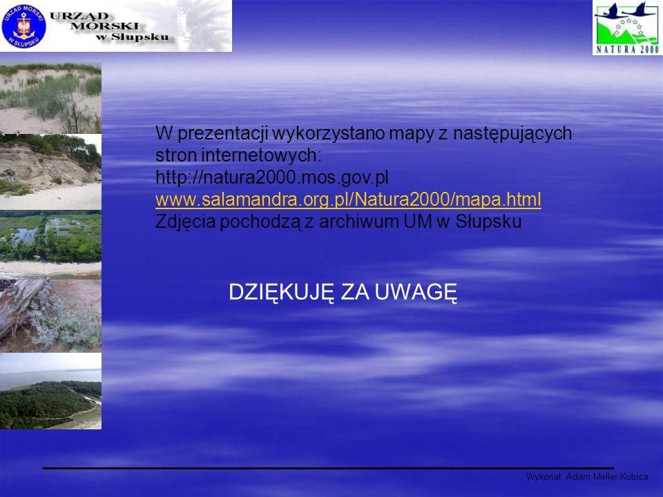 Wykonał: Adam Meller-Kubica W prezentacji wykorzystano mapy z następujących stron internetowych: http://natura2000.mos.gov.pl www.salamandra.org.pl/Na