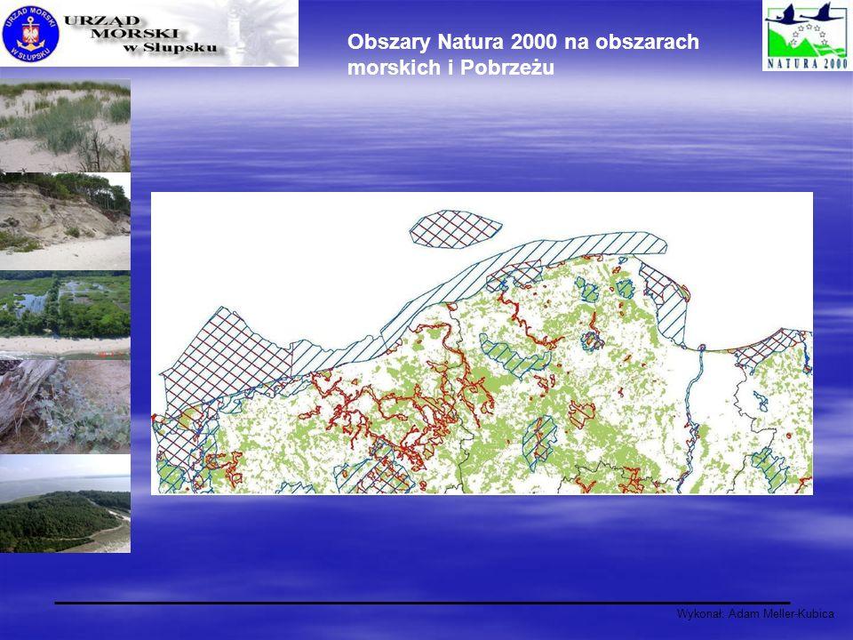 Wykonał: Adam Meller-Kubica Obszary Natura 2000 na obszarach morskich i Pobrzeżu