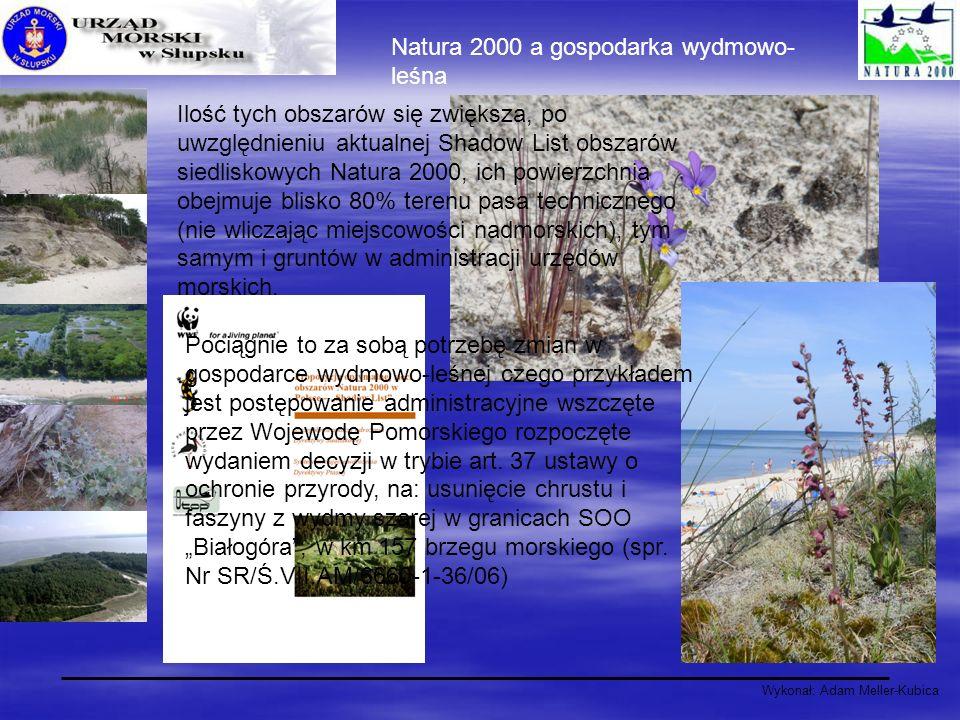 Wykonał: Adam Meller-Kubica Natura 2000 a gospodarka wydmowo- leśna Pociągnie to za sobą potrzebę zmian w gospodarce wydmowo-leśnej czego przykładem j