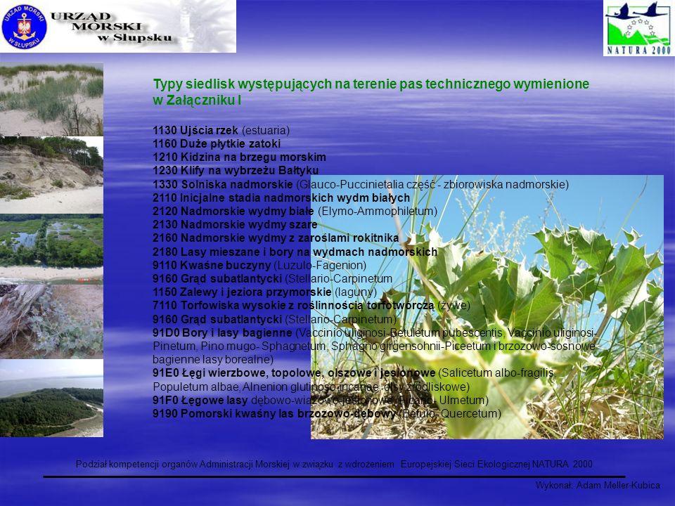 Wykonał: Adam Meller-Kubica Podział kompetencji organów Administracji Morskiej w związku z wdrożeniem Europejskiej Sieci Ekologicznej NATURA 2000 Typy