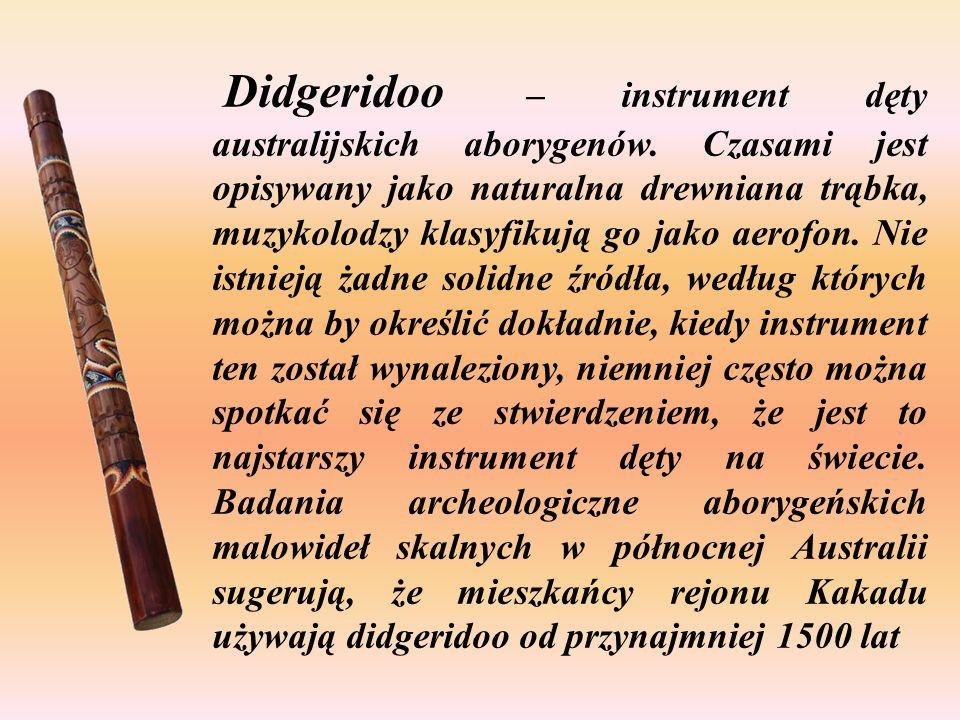 Dla aborygenów zamieszkujących północną Australię didgeridoo jest ważna częścią ich kultury i odgrywa kluczową rolę w wielu z ich tradycyjnych ceremon