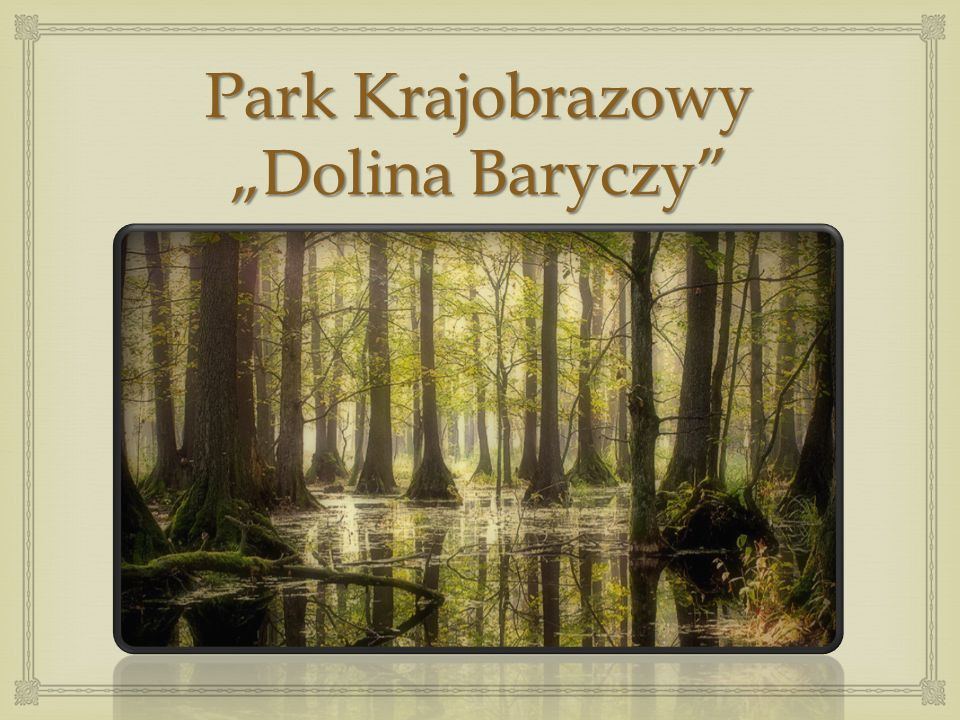 Suwalski Park Krajobrazowy został utworzony w 1976 roku jako pierwszy park krajobrazowy w Polsce. Obejmuje Zagłębienie Szeszupy i tereny otaczające je