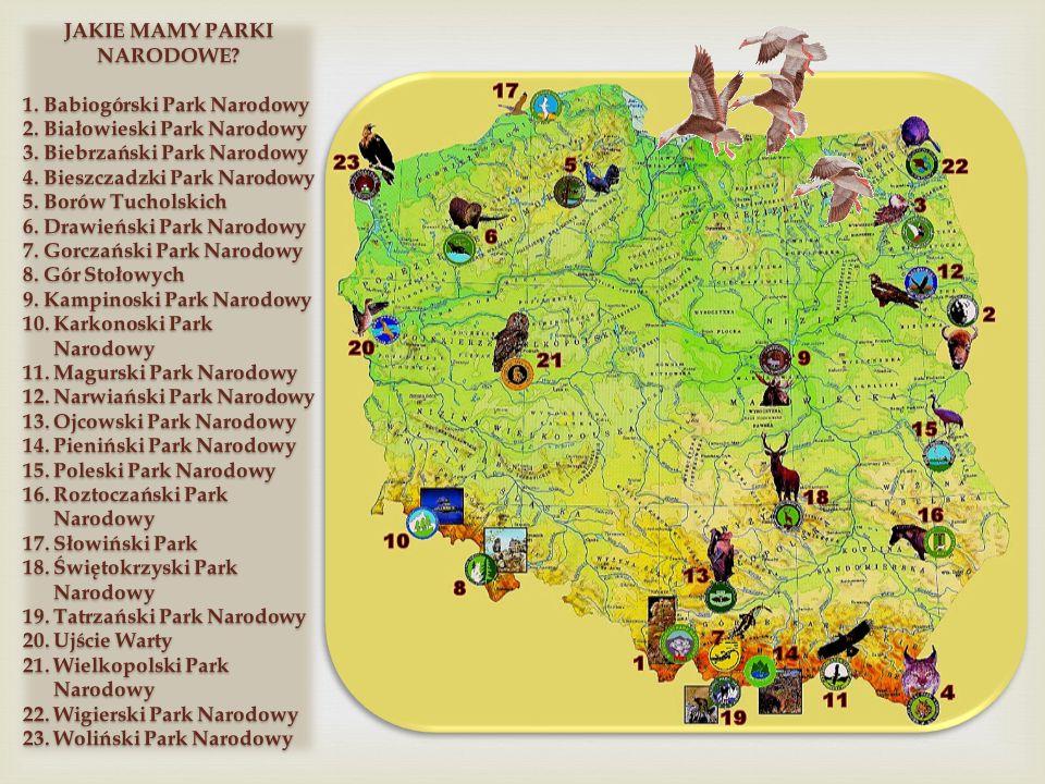 Park Krajobrazowy Dolina Baryczy powstał w 1996 r.