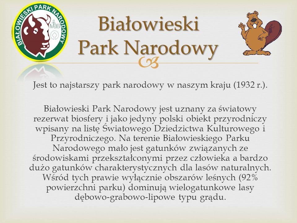 Jest to najstarszy park narodowy w naszym kraju (1932 r.).