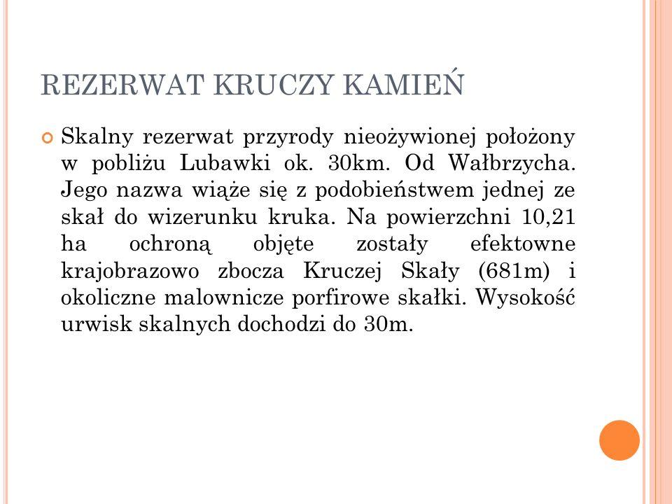 REZERWAT KRUCZY KAMIEŃ Skalny rezerwat przyrody nieożywionej położony w pobliżu Lubawki ok. 30km. Od Wałbrzycha. Jego nazwa wiąże się z podobieństwem