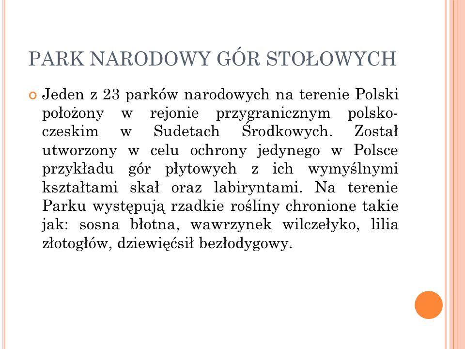 PARK NARODOWY GÓR STOŁOWYCH Jeden z 23 parków narodowych na terenie Polski położony w rejonie przygranicznym polsko- czeskim w Sudetach Środkowych. Zo