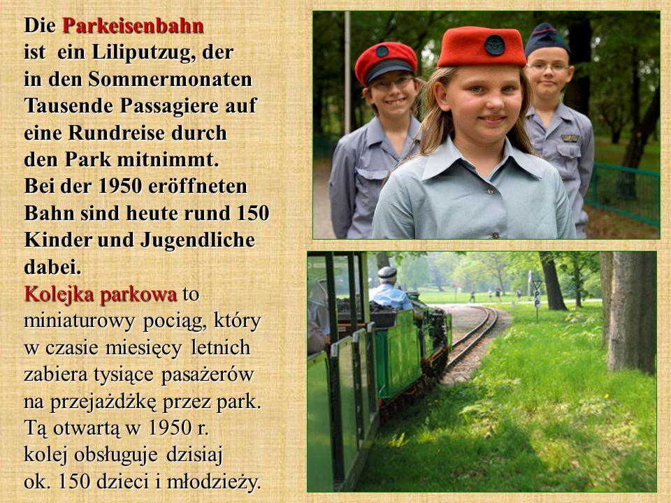 Die Parkeisenbahn ist ein Liliputzug, der in den Sommermonaten Tausende Passagiere auf eine Rundreise durch den Park mitnimmt. Bei der 1950 eröffneten