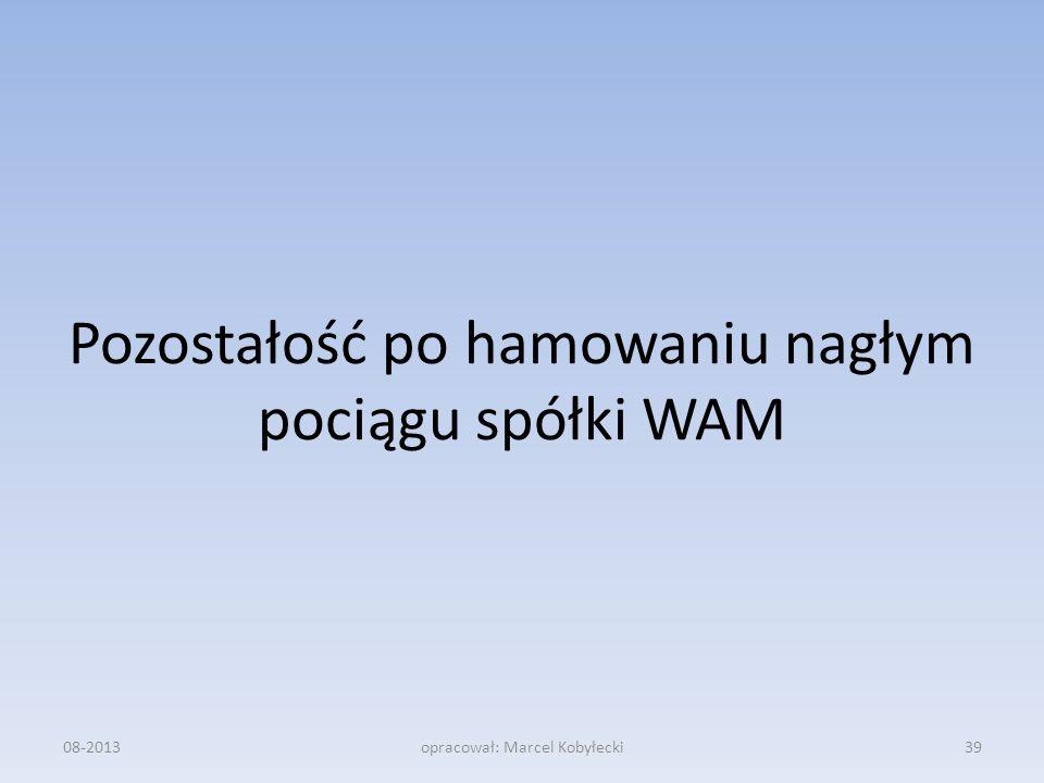 Pozostałość po hamowaniu nagłym pociągu spółki WAM 08-2013opracował: Marcel Kobyłecki39