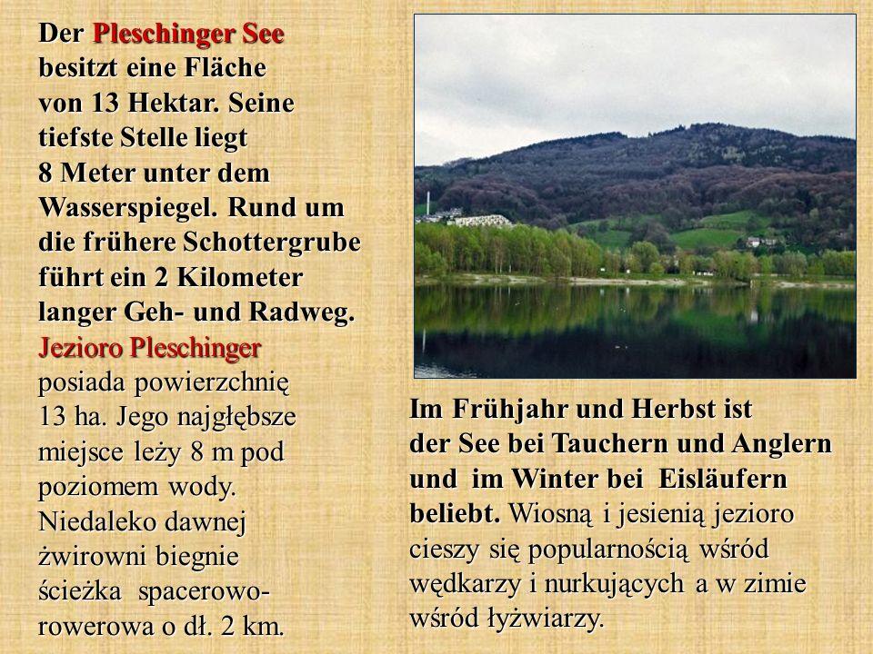 Im Frühjahr und Herbst ist der See bei Tauchern und Anglern und im Winter bei Eisläufern beliebt. Wiosną i jesienią jezioro cieszy się popularnością w