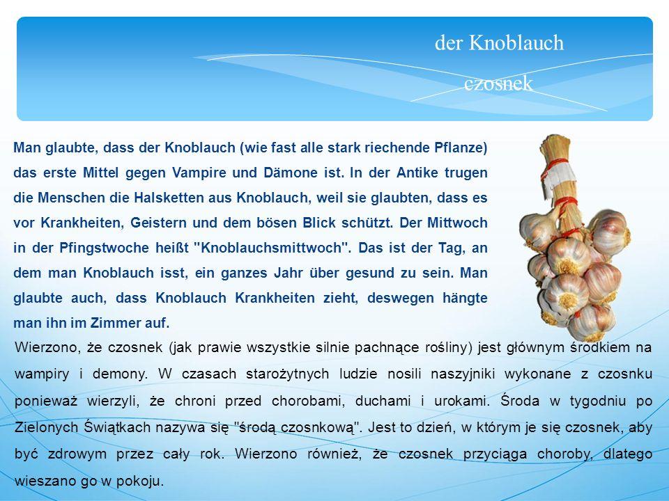 der Knoblauch czosnek Man glaubte, dass der Knoblauch (wie fast alle stark riechende Pflanze) das erste Mittel gegen Vampire und Dämone ist.