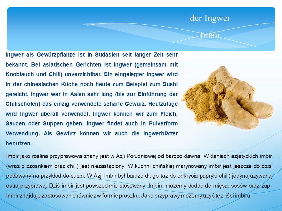 der Ingwer Imbir Ingwer als Gewürzpflanze ist in Südasien seit langer Zeit sehr bekannt.
