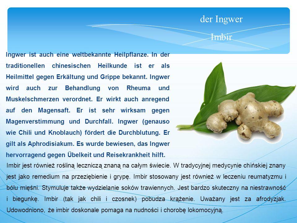 der Koriander kolendra Koriander ist eine einjährige Pflanze.