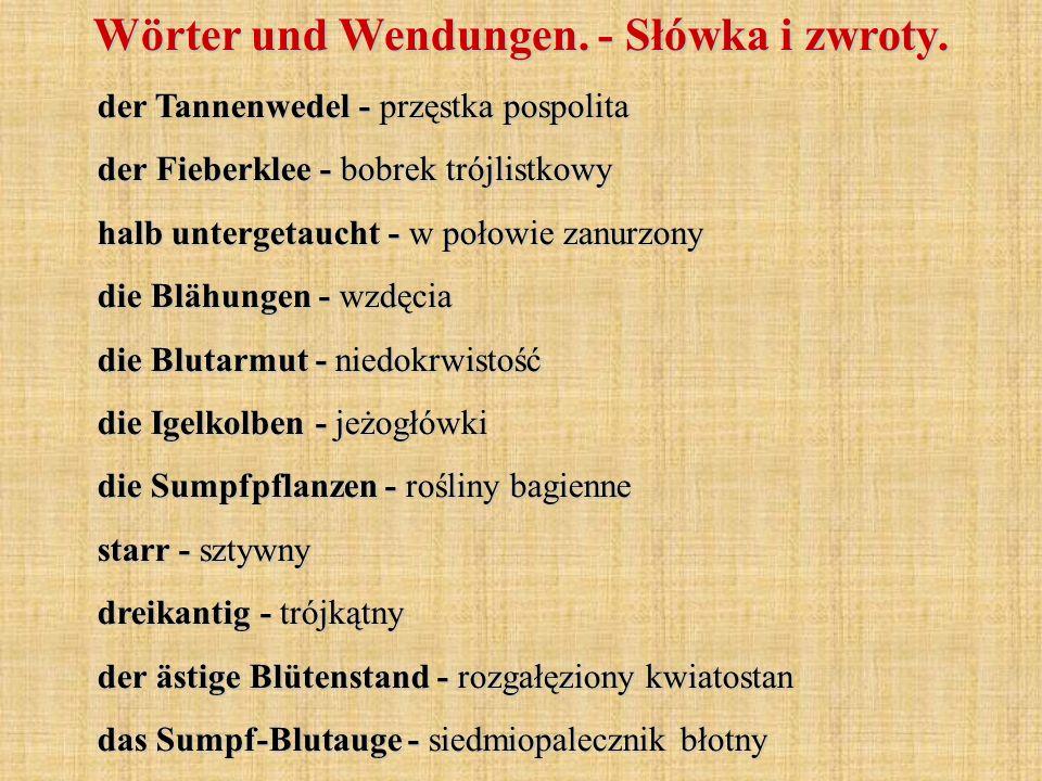 Wörter und Wendungen. - Słówka i zwroty. der Tannenwedel - przęstka pospolita der Fieberklee - bobrek trójlistkowy halb untergetaucht - w połowie zanu