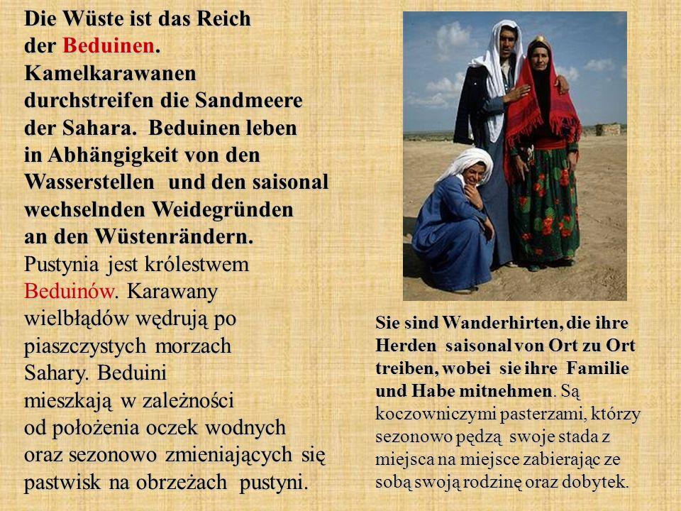 Die Wüste ist das Reich der Beduinen. Kamelkarawanen durchstreifen die Sandmeere der Sahara. Beduinen leben in Abhängigkeit von den Wasserstellen und