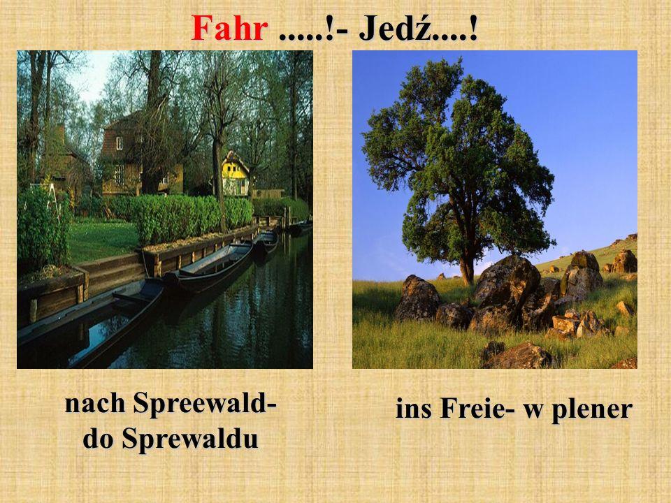 Fahr.....!- Jedź....! nach Spreewald- do Sprewaldu ins Freie- w plener