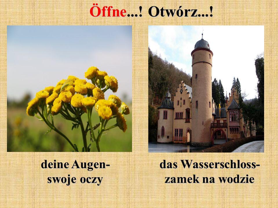 Öffne...! Otwórz...! deine Augen- swoje oczy das Wasserschloss- zamek na wodzie