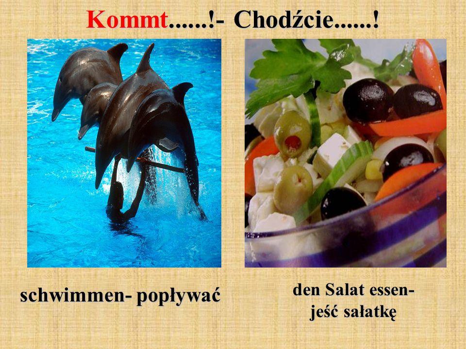 Kommt......!- Chodźcie......! schwimmen- popływać den Salat essen- jeść sałatkę