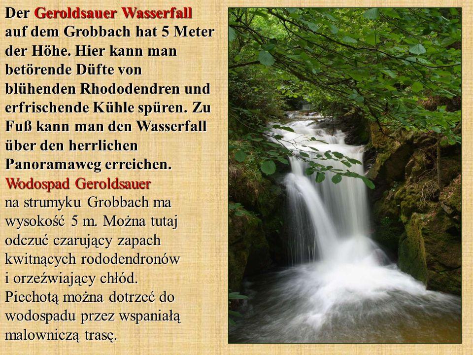Der Geroldsauer Wasserfall auf dem Grobbach hat 5 Meter der Höhe. Hier kann man betörende Düfte von blühenden Rhododendren und erfrischende Kühle spür