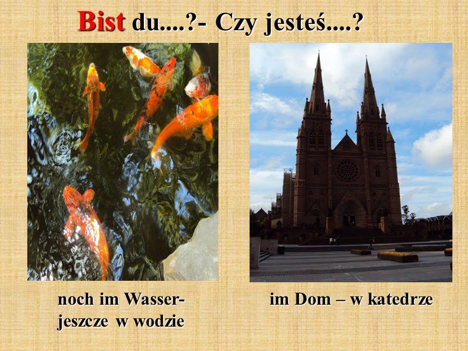 Bist du....?- Czy jesteś....? noch im Wasser- jeszcze w wodzie im Dom – w katedrze