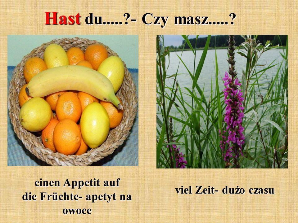 Hast du.....?- Czy masz.....? einen Appetit auf die Früchte- apetyt na owoce viel Zeit- dużo czasu