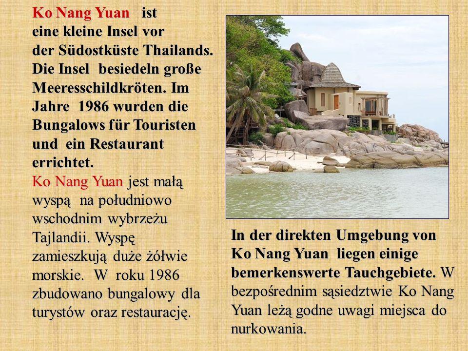 Ko Nang Yuan ist eine kleine Insel vor der Südostküste Thailands. Die Insel besiedeln große Meeresschildkröten. Im Jahre 1986 wurden die Bungalows für
