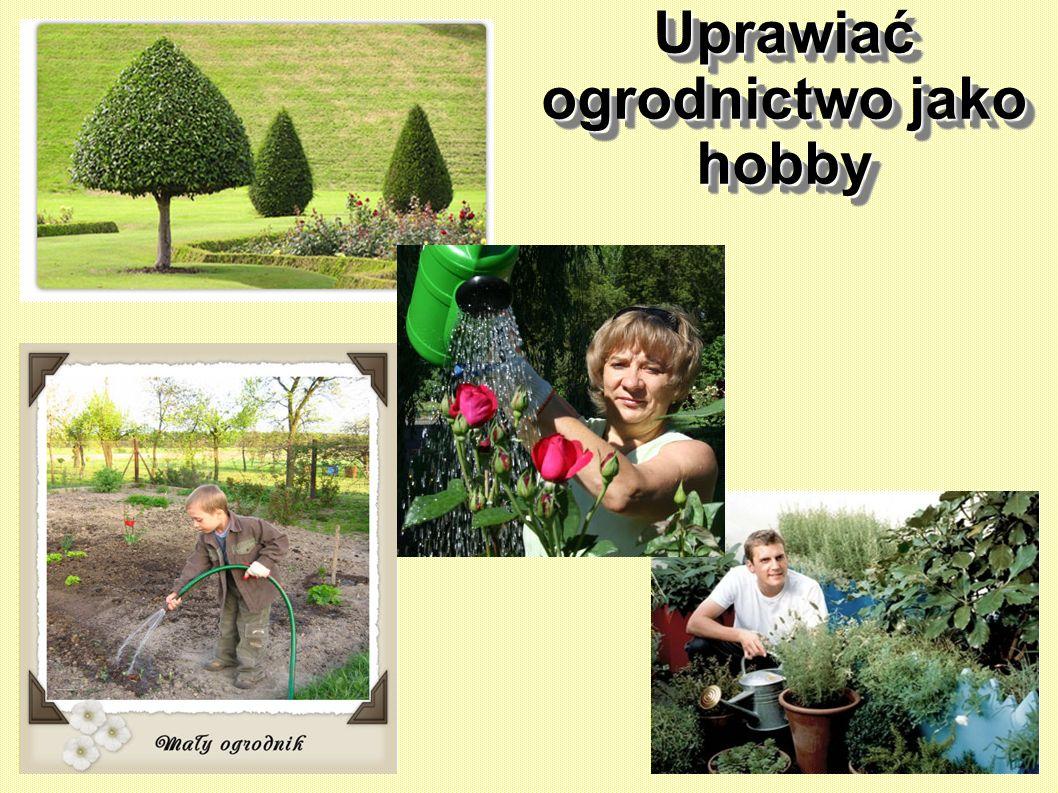 Den Garten als Hobby betreiben betreiben