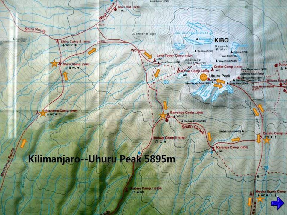 Machame Camp (3020m)