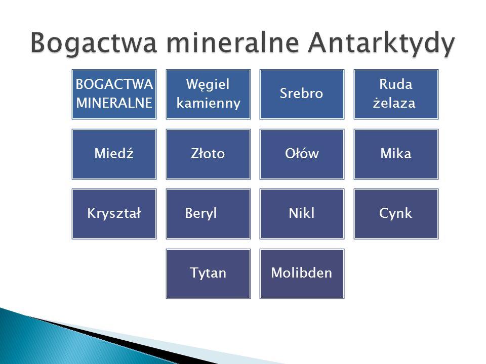 BOGACTWA MINERALNE Węgiel kamienny Srebro Ruda żelaza MiedźZłotoOłówMika KryształBerylNiklCynk TytanMolibden