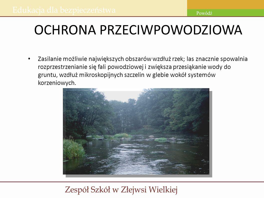 OCHRONA PRZECIWPOWODZIOWA Zasilanie możliwie największych obszarów wzdłuż rzek; las znacznie spowalnia rozprzestrzenianie się fali powodziowej i zwięk