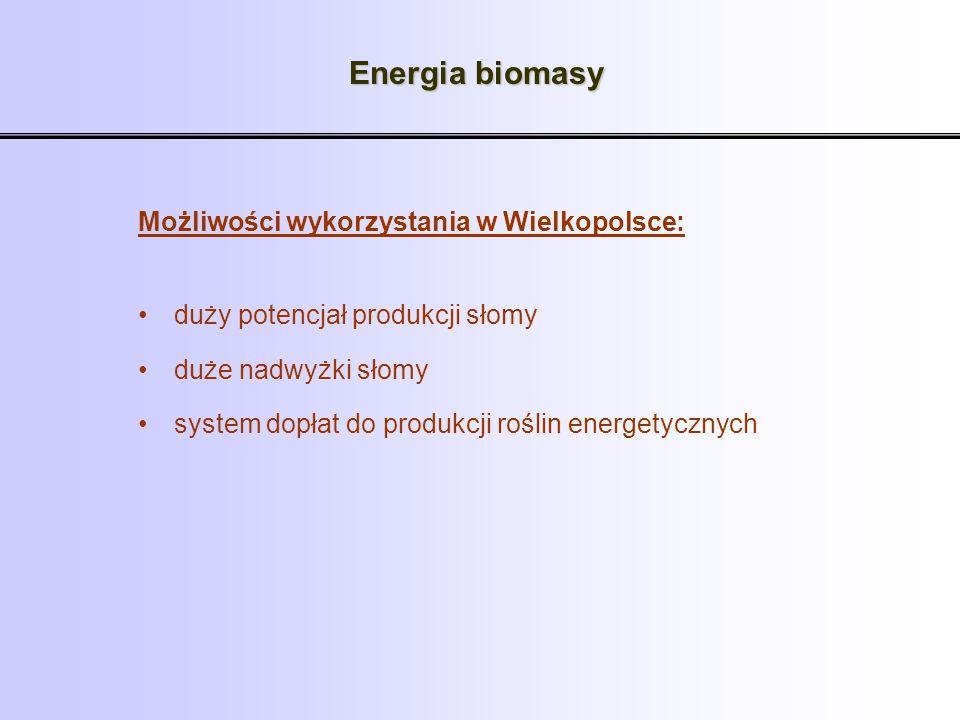 Energia biomasy Możliwości wykorzystania w Wielkopolsce: duży potencjał produkcji słomy duże nadwyżki słomy system dopłat do produkcji roślin energety