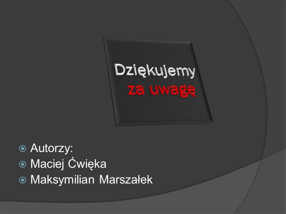 Autorzy: Maciej Ćwięka Maksymilian Marszałek