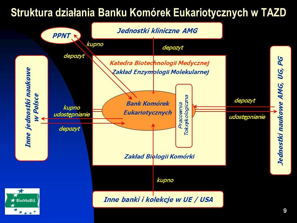 9 Jednostki kliniczne AMG Inne banki i kolekcje w UE / USA PPNT Inne jednostki naukowe w Polsce Jednostki naukowe AMG, UG, PG Katedra Biotechnologii Medycznej Zakład Enzymologii Molekularnej Zakład Biologii Komórki Bank Komórek Eukariotycznych Pracownia Toksykologiczna kupno depozyt udostępnianie kupno depozyt kupno udostępnianie Struktura działania Banku Komórek Eukariotycznych w TAZD