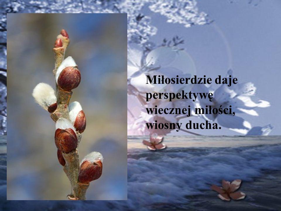 Miłosierdzie daje perspektywę wiecznej miłości, wiosny ducha.