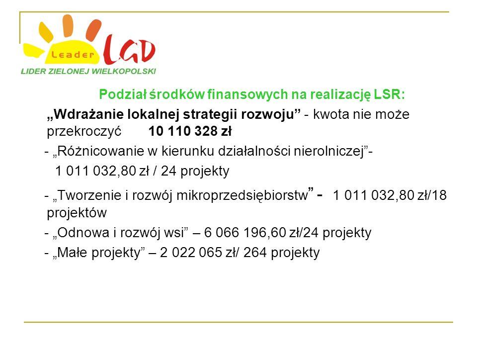 Podział środków finansowych na realizację LSR: Wdrażanie lokalnej strategii rozwoju - kwota nie może przekroczyć 10 110 328 zł - Różnicowanie w kierunku działalności nierolniczej- 1 011 032,80 zł / 24 projekty - Tworzenie i rozwój mikroprzedsiębiorstw - 1 011 032,80 zł/18 projektów - Odnowa i rozwój wsi – 6 066 196,60 zł/24 projekty - Małe projekty – 2 022 065 zł/ 264 projekty