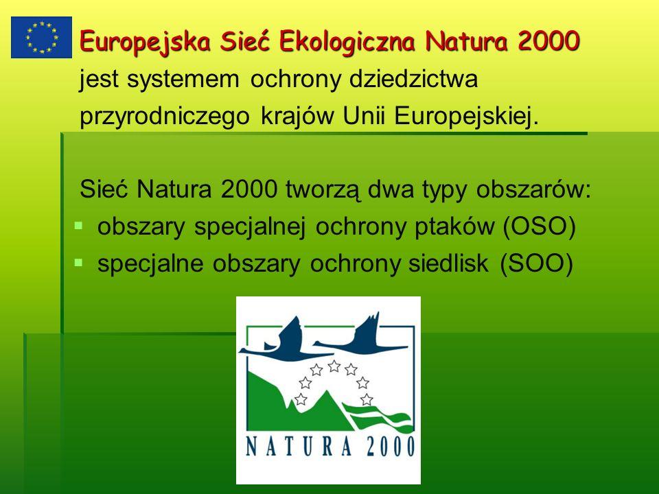 Europejska Sieć Ekologiczna Natura 2000 Europejska Sieć Ekologiczna Natura 2000 jest systemem ochrony dziedzictwa przyrodniczego krajów Unii Europejsk