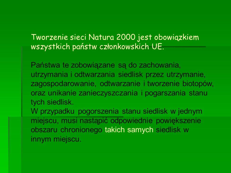 Tworzenie sieci Natura 2000 jest obowiązkiem wszystkich państw członkowskich UE. Państwa te zobowiązane są do zachowania, utrzymania i odtwarzania sie