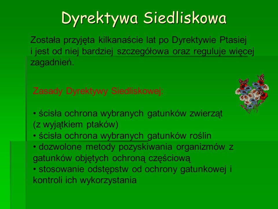 Dyrektywa Siedliskowa Została przyjęta kilkanaście lat po Dyrektywie Ptasiej i jest od niej bardziej szczegółowa oraz reguluje więcej zagadnień. Zasad