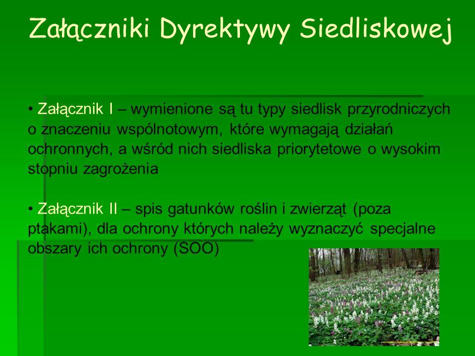 Załączniki Dyrektywy Siedliskowej Załącznik I – wymienione są tu typy siedlisk przyrodniczych o znaczeniu wspólnotowym, które wymagają działań ochronn