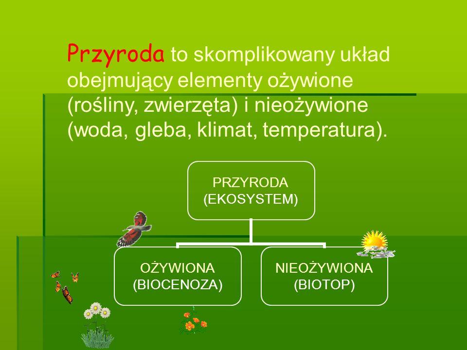 PRZYRODA (EKOSYSTEM) OŻYWIONA (BIOCENOZA) NIEOŻYWIONA (BIOTOP) Przyroda to skomplikowany układ obejmujący elementy ożywione (rośliny, zwierzęta) i nie