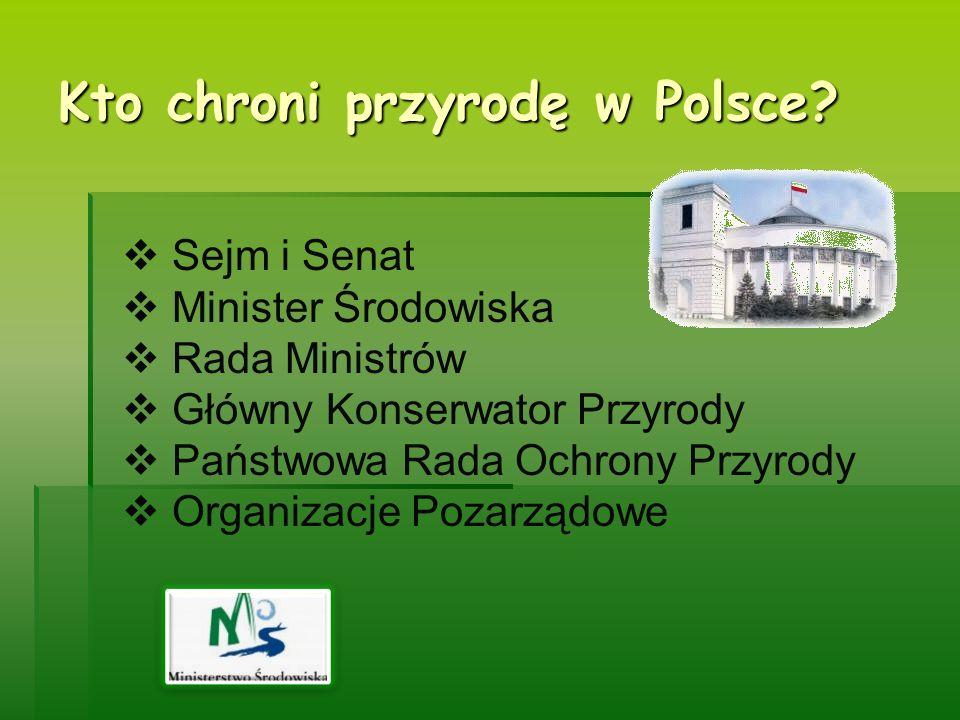 Kto chroni przyrodę w Polsce? Sejm i Senat Minister Środowiska Rada Ministrów Główny Konserwator Przyrody Państwowa Rada Ochrony Przyrody Organizacje