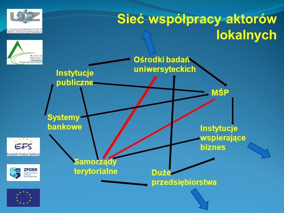 Sieć współpracy aktorów lokalnych Instytucje publiczne Systemy bankowe Samorządy terytorialne Ośrodki badań uniwersyteckich MŚP Instytucje wspierające