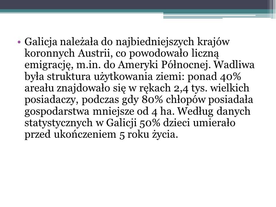 Galicja należała do najbiedniejszych krajów koronnych Austrii, co powodowało liczną emigrację, m.in. do Ameryki Północnej. Wadliwa była struktura użyt