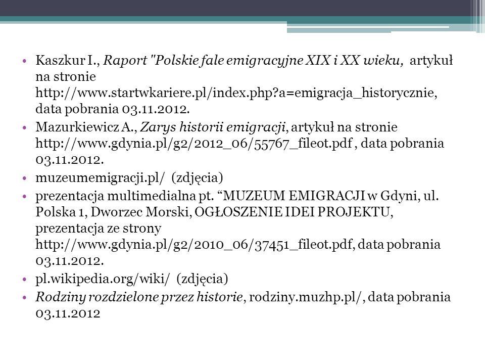 Kaszkur I., Raport