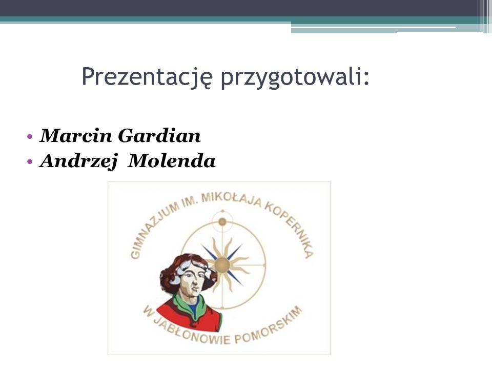 Prezentację przygotowali: Marcin Gardian Andrzej Molenda