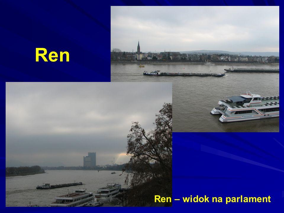Ren Ren – widok na parlament